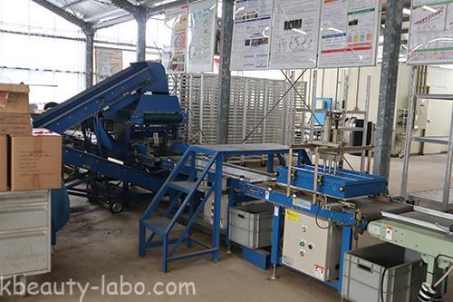 高度化セル成型苗生産利用システム